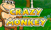 Crazy Monkey slot game